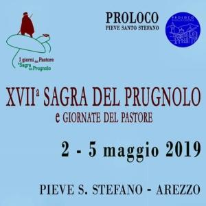 Pieve S. Stefano (AR) - Sagra del Prugnolo