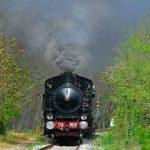 Marradi treno a Vapore