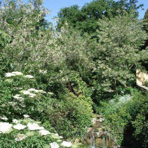 cascatella torrente Mensola