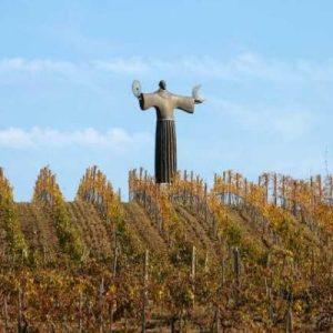S. Francesco nelle vigne