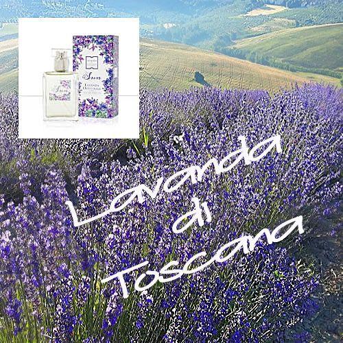 Lavanda di Toscana