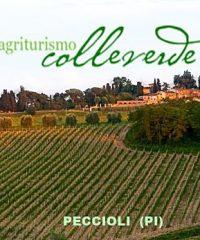 Agriturismo Colleverde