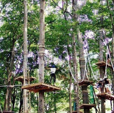 Parco avventura Indiana Park