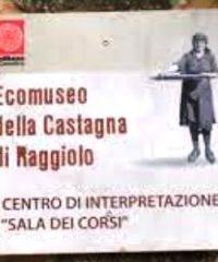 museo della Castagna