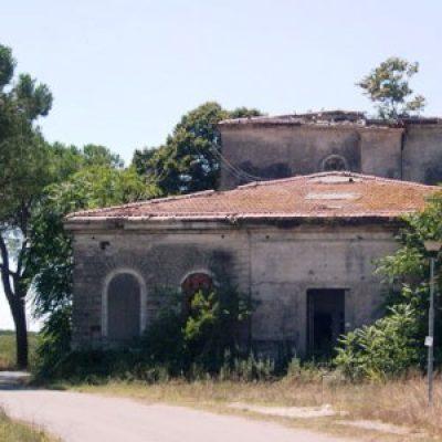 Coltano