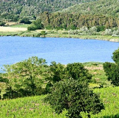 Parco Archeologico della Civiltà Etrusca del Lago dell'Accesa