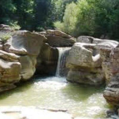 riserva naturale di Merse