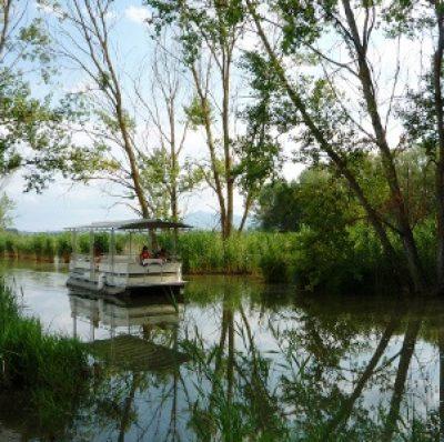 riserva naturale del lago di Montepulciano
