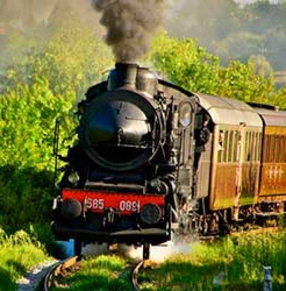 Steam train excursions December 2016   Siena area