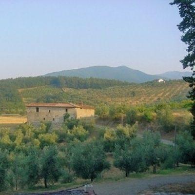 Riserva naturale di Monteferrato