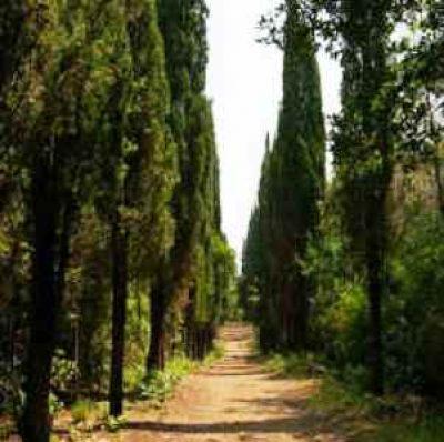 Parco della Magona