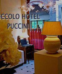 Hotel Puccini