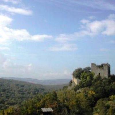 Riserva naturalistica di Berignone e la foresta di Tatti