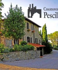 Casanova di Pescille