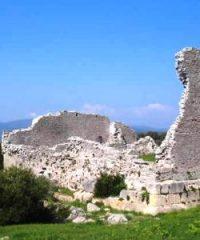 Tour all'area archeologica di Cosa