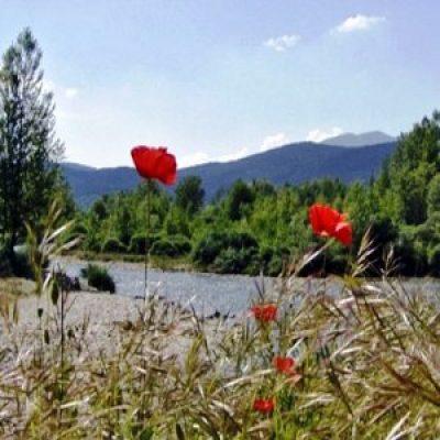 Parco dei Monti Rognosi e della Valle del Sovara