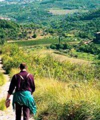 Escursioni Trekking nel Monte Amiata