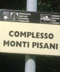 Monti Pisani