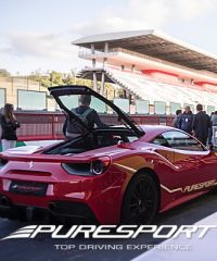 Puresport driving experience