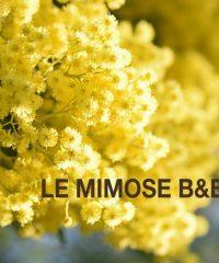 Le Minose B&B