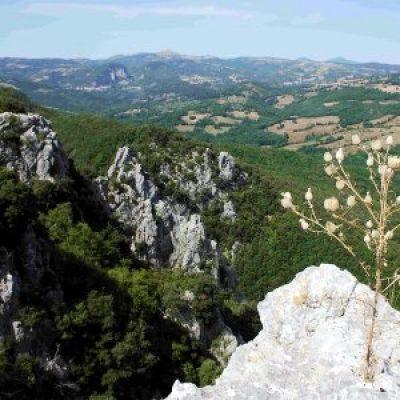 Riserva naturale Rocconi