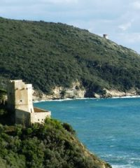 Torre delle Cannelle
